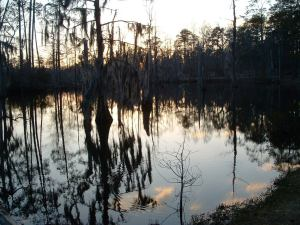 The Bayou at sunset.